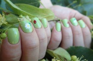 Маникюр с ромашками, летний дизайн ногтей с ромашками и божьими коровками